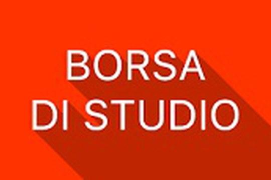 """Bando n. 1 borsa di formazione per Giovani Laureati - tutor prof. Quaranta """"L'equità nel diritto alla salute: il contrasto alle disuguaglianze nella città di Bologna"""""""