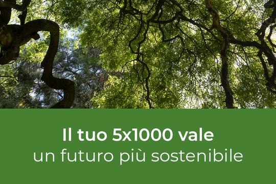 Il 5x1000 all'Alma Mater per sostenere i progetti sulla sostenibilità